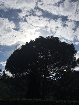 Passeggiata sul Lungo Passirio