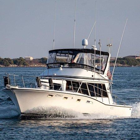 Cobalt Sport Fishing