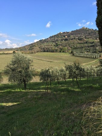 Tuscan Wine Tour by Italy and Wine (Florence) - 2019 All ...