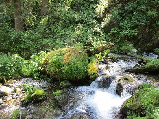 Waterfall Estyuba