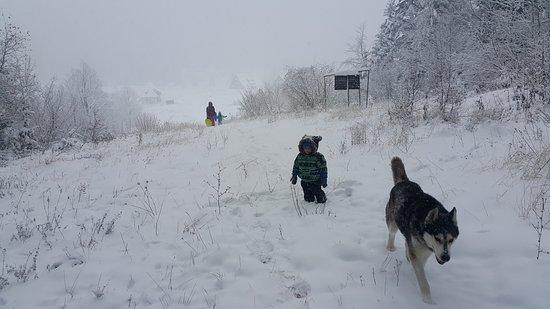 Snow on Mitrovac at National Park Tara