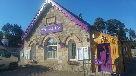 1896 Gallery: 1896 Gallery