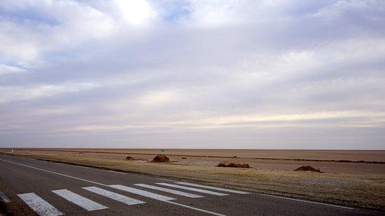 Salzseen, Wüste, Oasen – wer hätte das alles in #Tunesien vermutet? Der #Süden dieses Landes im Norden von #Afrika hält so manche Überraschung bereit. Hier zu sehen: der #Salzsee Chott el Djerid, der auf einer 50 Kilometer langen, schnurgeraden Straße sicher überquert werden kann. #reiselustmag