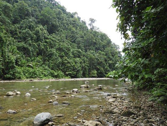 Ternate, Indonesia: Halmahera jungles