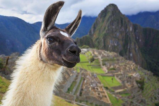 Sacred Travel Peru