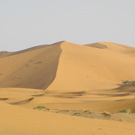 Authentic Moroccan Adventure