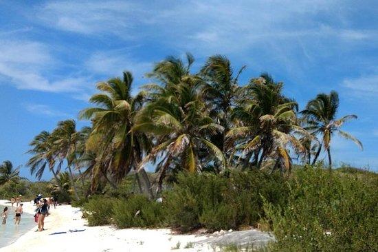 Excursion d'une journée à Isla Contoy...