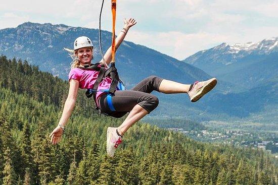 Zipline Adventure in Whistler (389084295)