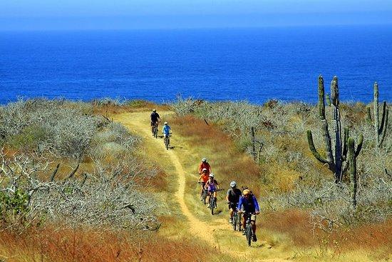 Los Cabos Mountain Bike Adventure