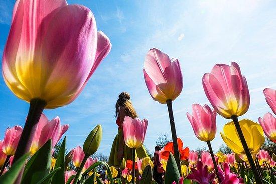 Evite las colas: Visita a los Jardines...