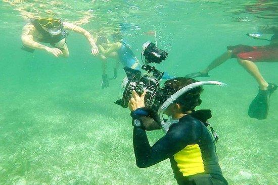 Avventura di snorkeling con pranzo a
