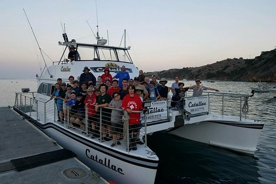 Catalina Island Flying Fish Tour