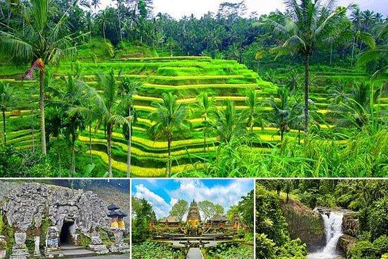 私人旅游:象洞乌布,Tegalalang水稻梯田,Tegenungan瀑布
