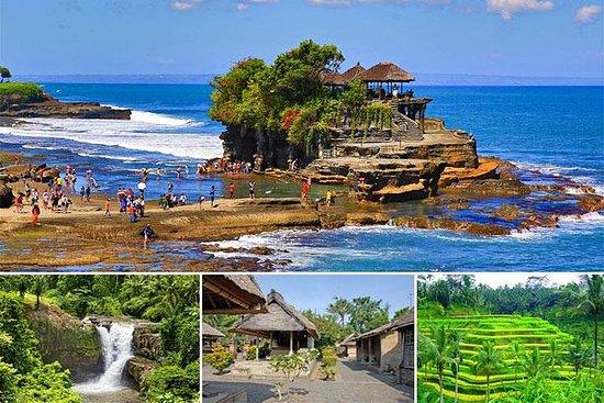 全日游:巴厘岛乌布艺术和海神庙私人之旅