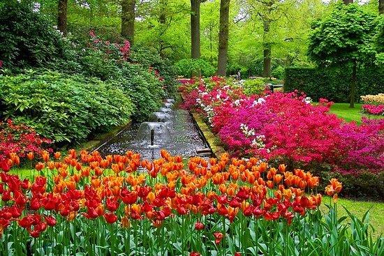 Keukenhof y campos de flores, Volendam...