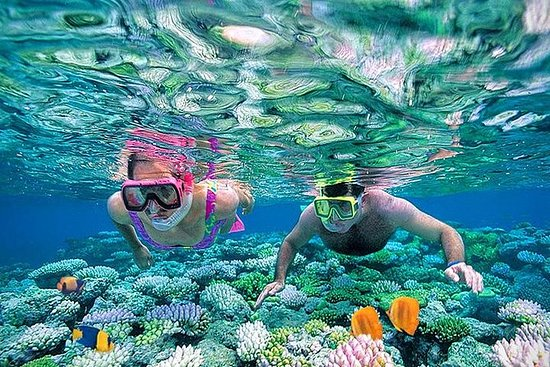 De Sharm: Introducción de día...