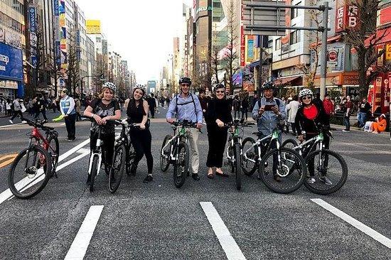 Explore beauty of Japan on an e-bike