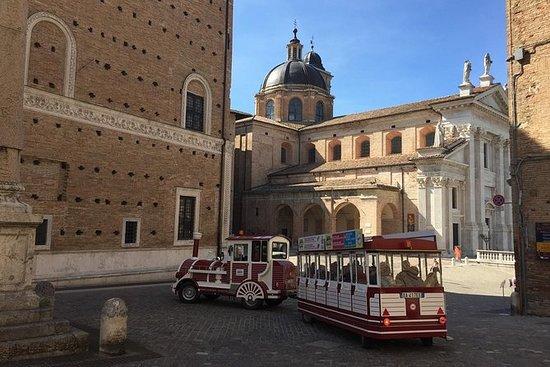 Urbino Explorer Turist Togstur