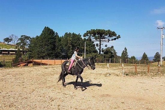 Paseo a caballo en las montañas 30 min