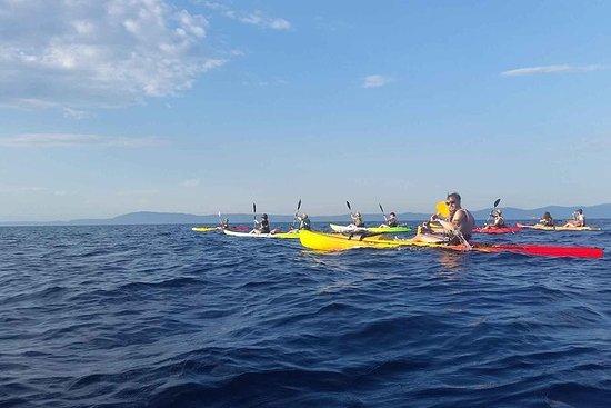 Tour di mezza giornata in kayak di mare