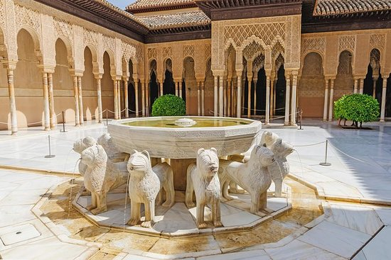 Alhambra & Nasrid Palaces Private...