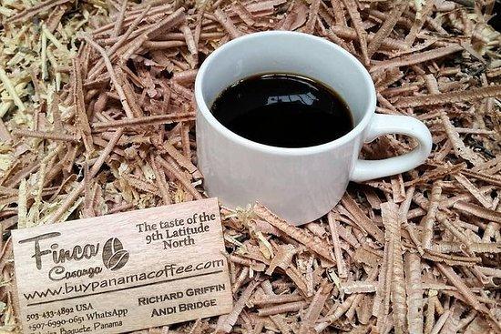 Excursão privada de café