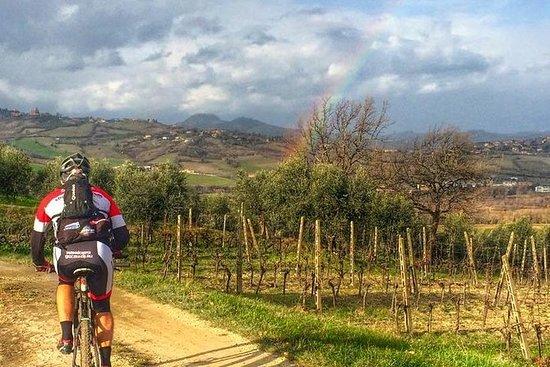Tour in bici ad est di Florianopolis