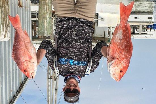 Medio día de pesca en alta mar de...