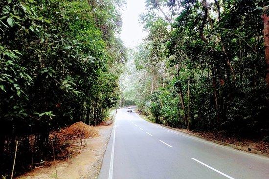 Sri Lanka Private 21 dias tour...