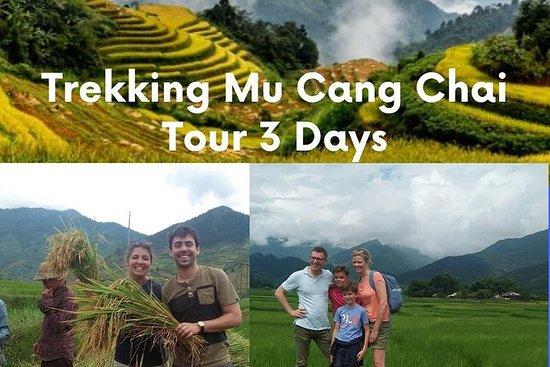Trekking Mu Cang Chai Tour 3 jours