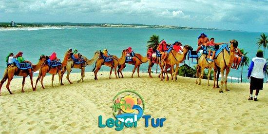 Legal Tur Passeios Natal