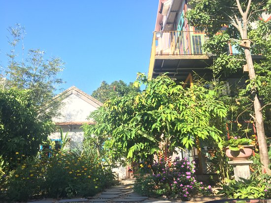 Great homestay with super host and super food available anytime