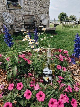 The County's Original Cider.