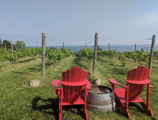 Come relax, have a cider and take in the best view in the County.