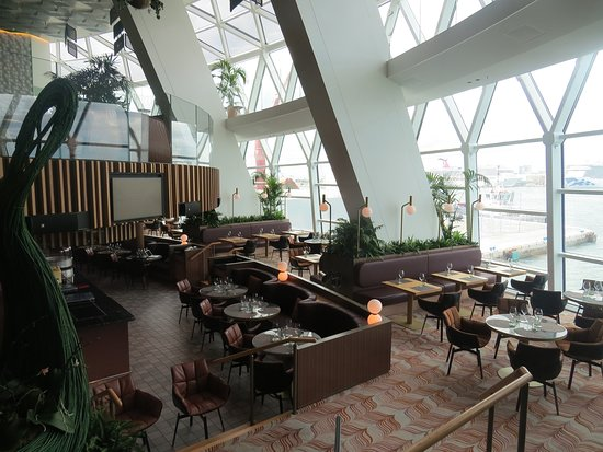 Celebrity Edge: The Eden lounge area, lush and magical.