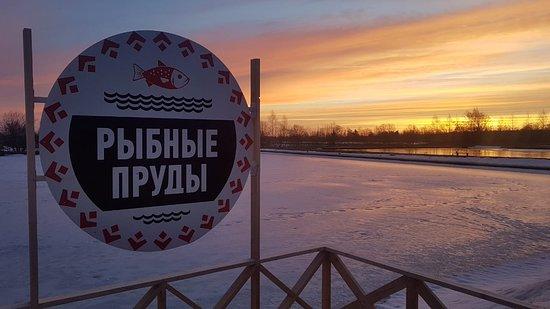 Ropsha, Rosja: На пороге весны. Закат в Рыбных Прудах.