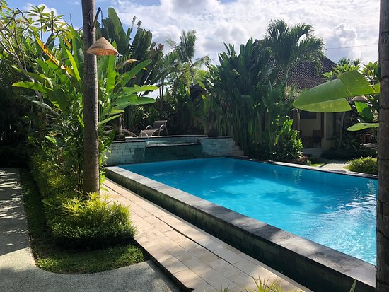 Bali Dream Resort 15 5 0 Prices Hotel Reviews Ubud Tripadvisor
