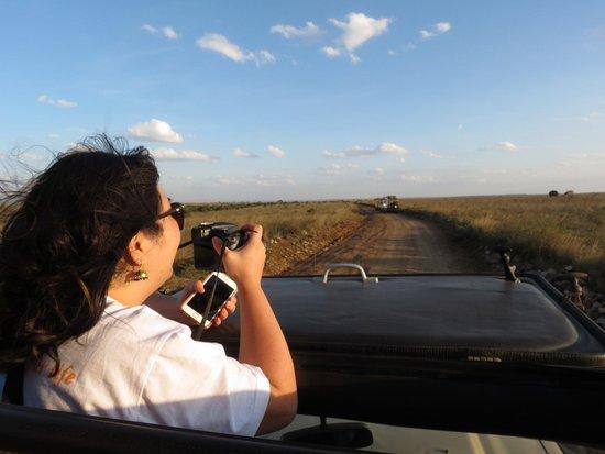 Wild Expeditions Kenya