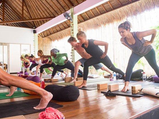 Amazing Yoga Teacher Training!!!