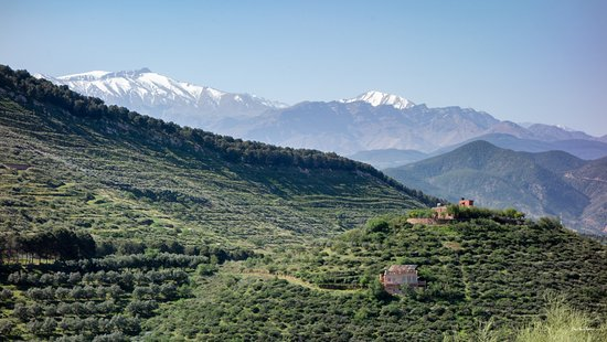 Le Douar Berbere照片