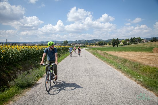 Greenways Italy Tours