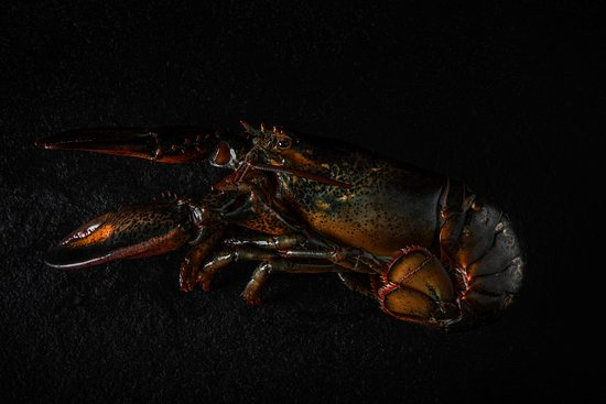 NOA Chef's Hall : Lobster