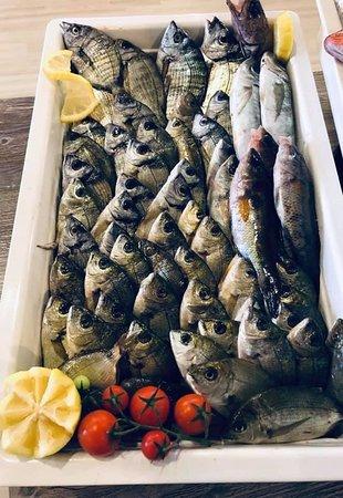 sempre pesce fresca appena pescata