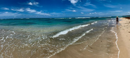 - This was about a mile down the beach to the left. Some highlights of our Amazing Paradise Bliss trip to Excellence Punta Cana.