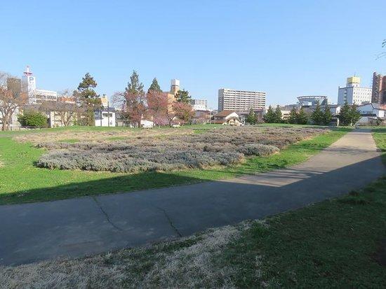 Yoshinocho Ryokuchi Park