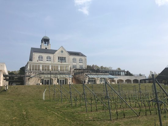 Nakaizu Winery Chateau T. S