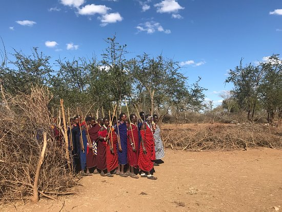 Monduli, Tanzanie : Traditional singing and dancing of Maasai warriors!