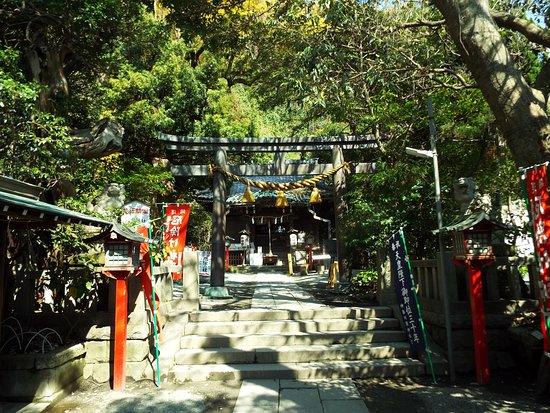 Yakumo Shrine: 本殿正面の鳥居。