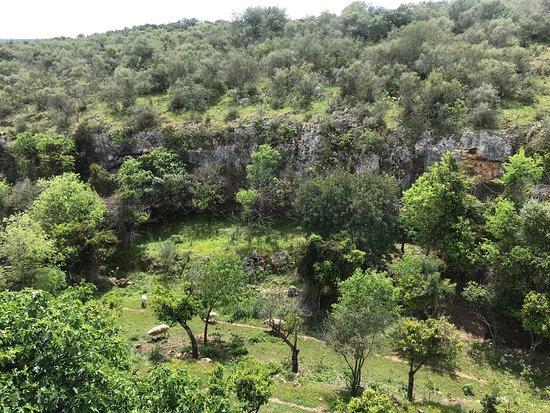 Foto de Centro de naturaleza Cañada Verde