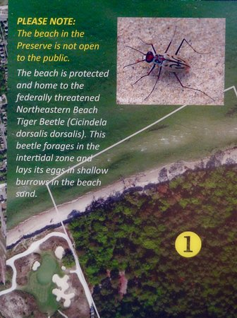 Now the feds are threatening Insects - not the best worded sign I have seen and not actually anywhere close to the Preserve.  Its in town about a mile away.